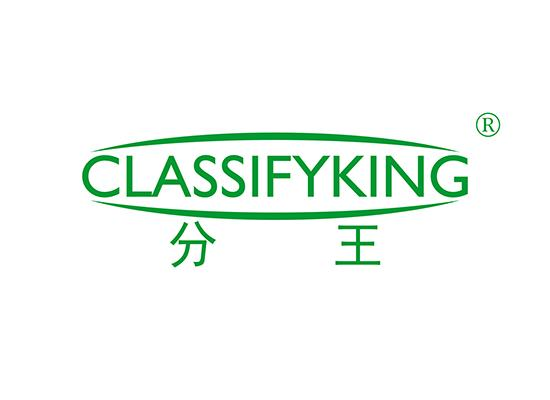 21-A912 分王  CLASSIFYKING