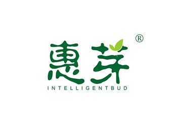 10-A919 惠芽 INTELLIGENT BUD