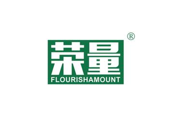 11-A2313 荣量 FLOURISHAMOUNT