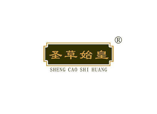 5-A1338 圣草始皇 SHENGCAOSHIHUANG