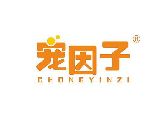 31-A996 宠因子 CHONG YIN ZI