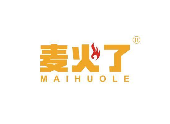 9-A2110 麦火了;MAIHUOLE