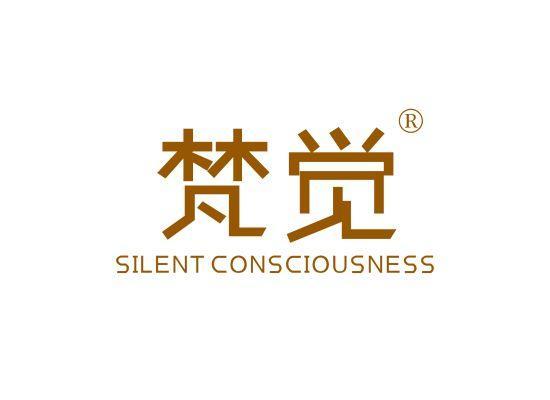 24-A705 梵觉 SILENT CONSCIOUSNESS