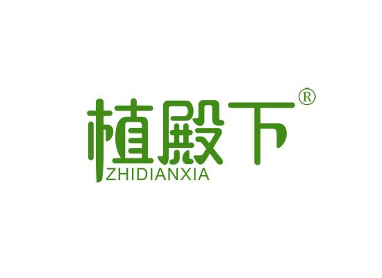 植殿下;ZHIDIANXIA