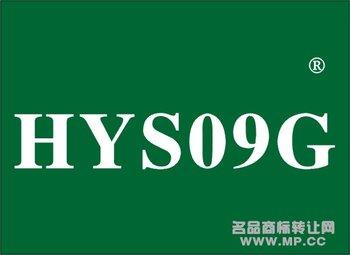 13-0031 HYSG