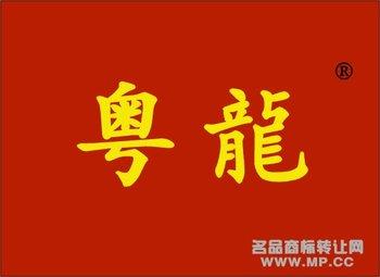 8-00249 粤龙